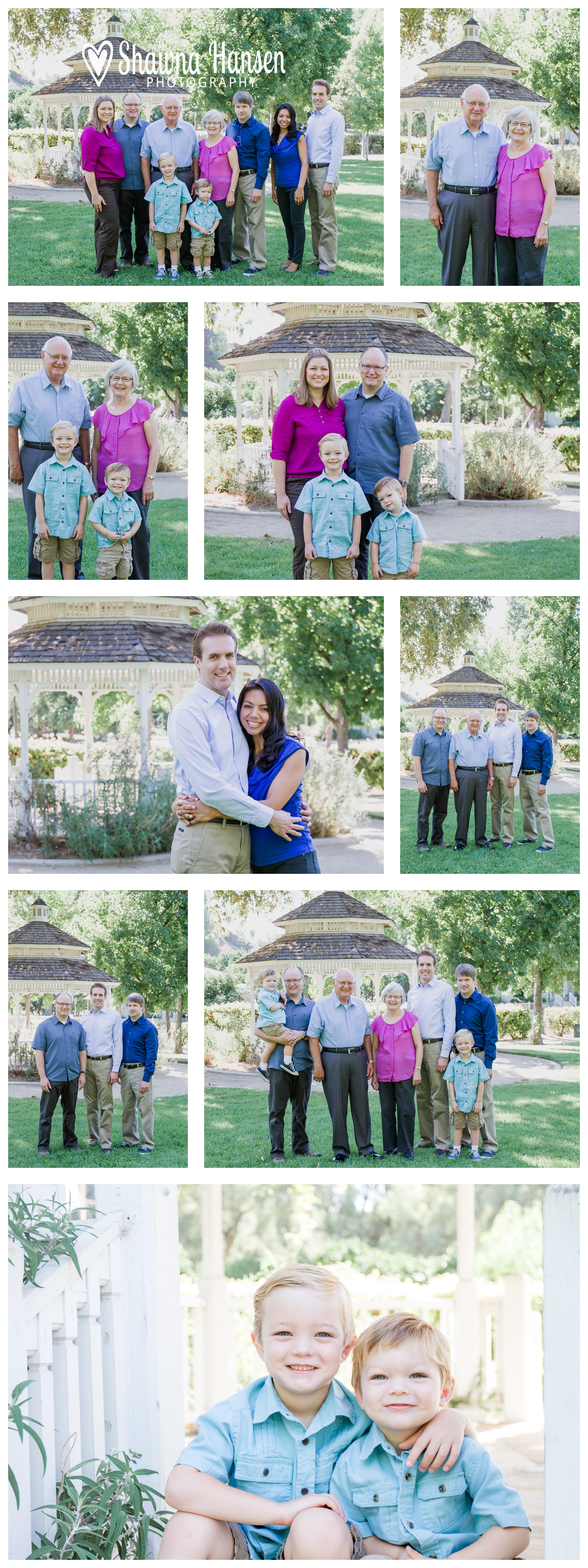 7.6.2014 Hamilton Family Collage