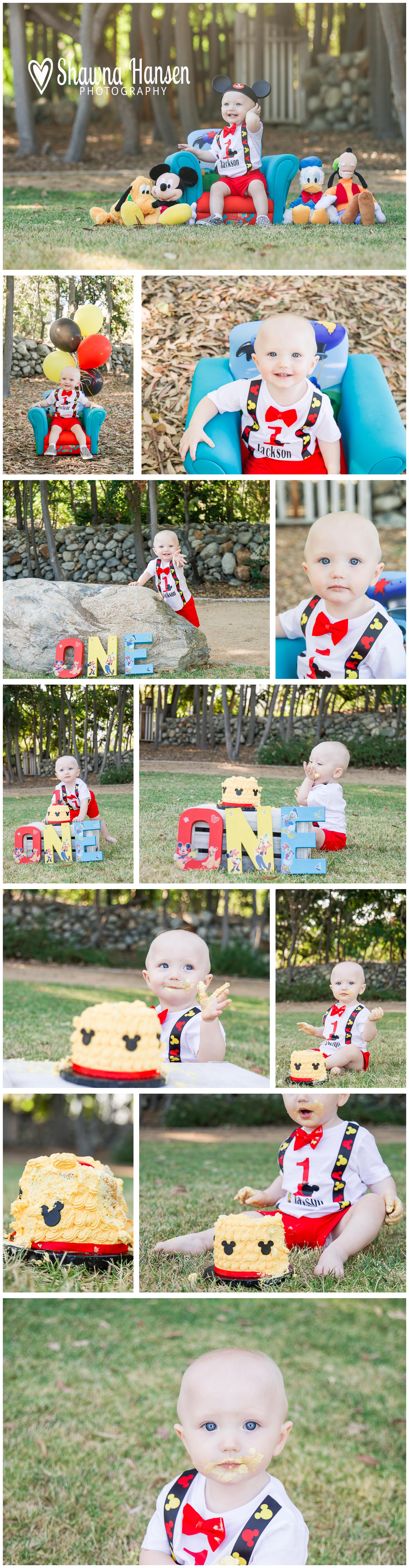 Jackson collage